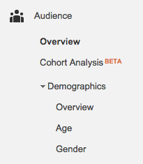 Google Analytics audience section