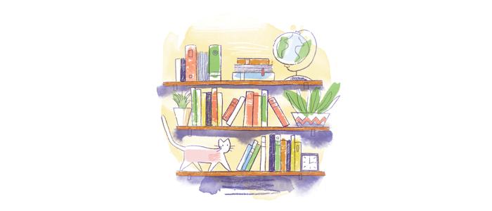 bookshelf-illustration